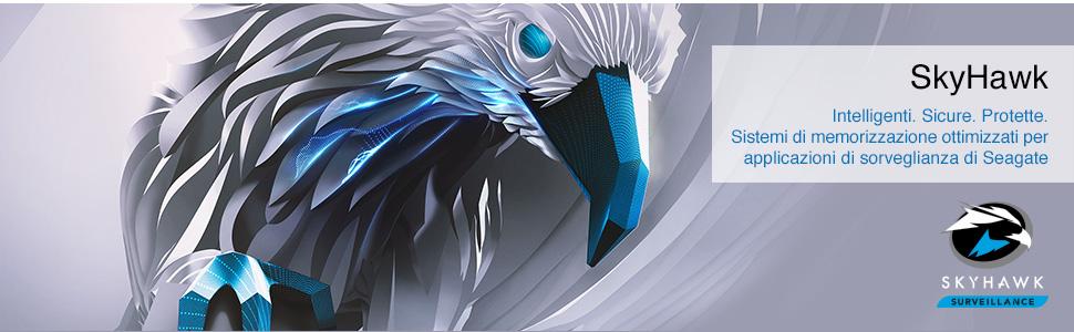 skyhawk1